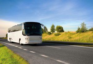 bílý autobus na cestě mezi lukami